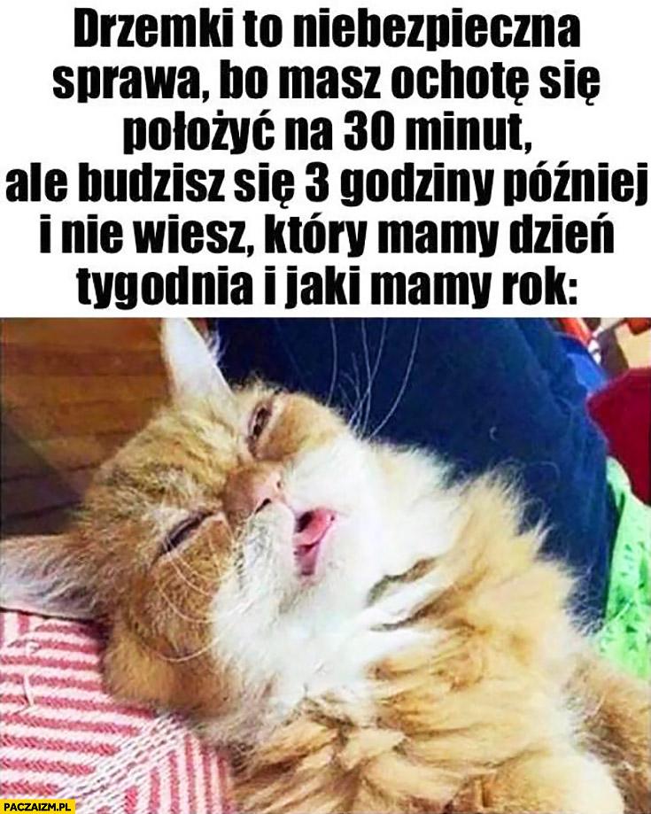 Kot drzemki to niebezpieczna sprawa bo masz ochotę położyć się na 30 minut a budzisz się 3 godziny później i nie wiesz który mamy dzień tygodnia i jaki mamy rok