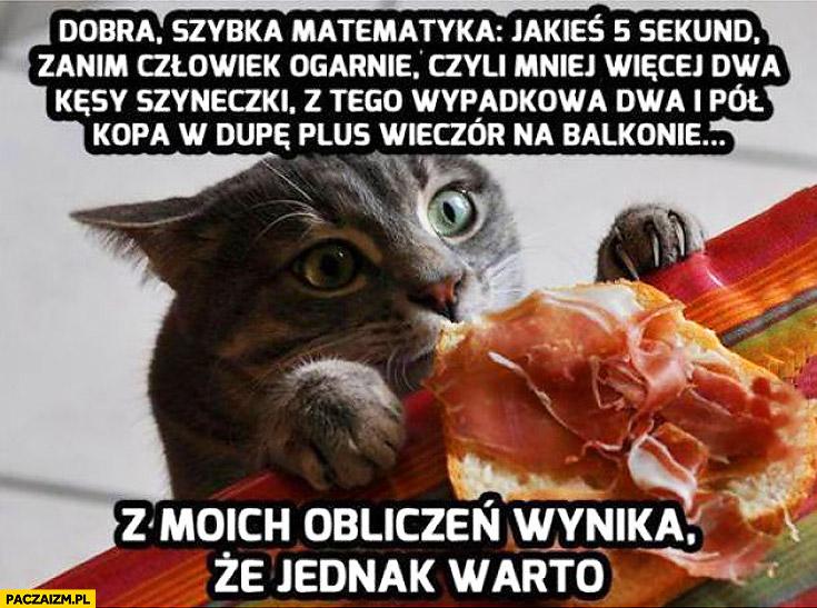 Kot dwa kęsy szyneczki z moich obliczeń wynika że warto