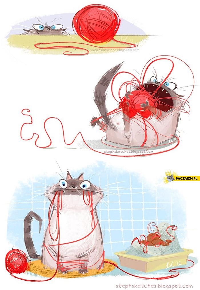 Kot i kłębek