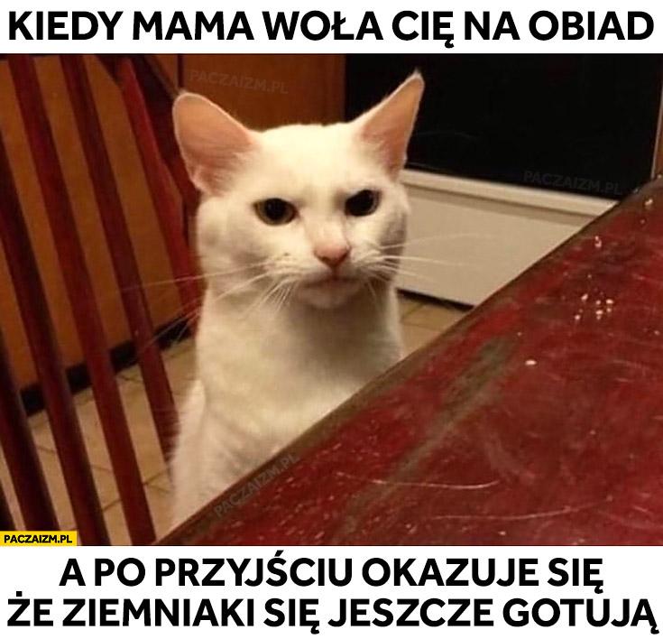 Kot kiedy mama woła Cię na obiad a po przyjściu okazuje się, że ziemniaki się jeszcze gotują
