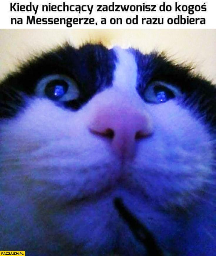 Kot kiedy niechcący zadzwonisz do kogoś na messengerze a on od razu odbiera kamera selfie