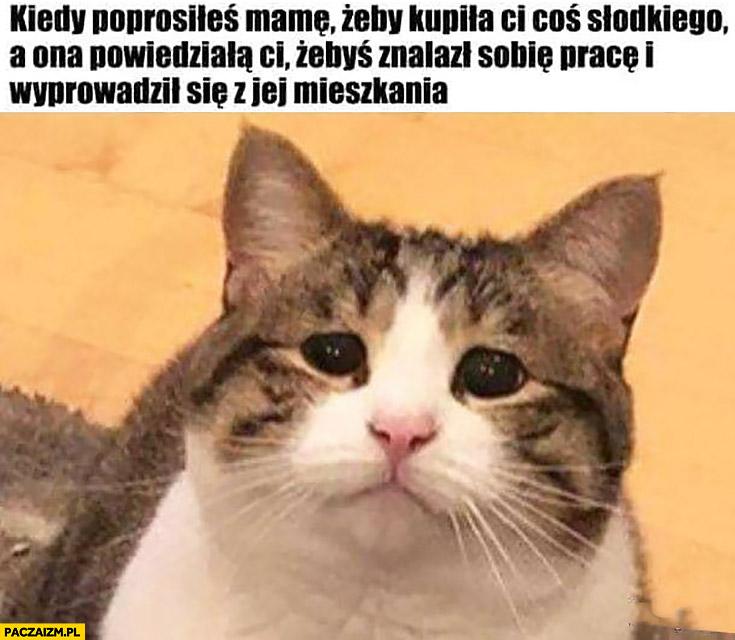 Kot kiedy poprosiłeś mamę żeby kupiła Ci coś słodkiego a ona powiedziała Ci żebyś znalazł sobie prace i wyprowadził się z jej mieszkania