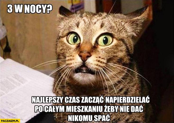 Kot kocia logika 3 w nocy najlepszy czas żeby nie dać nikomu spać