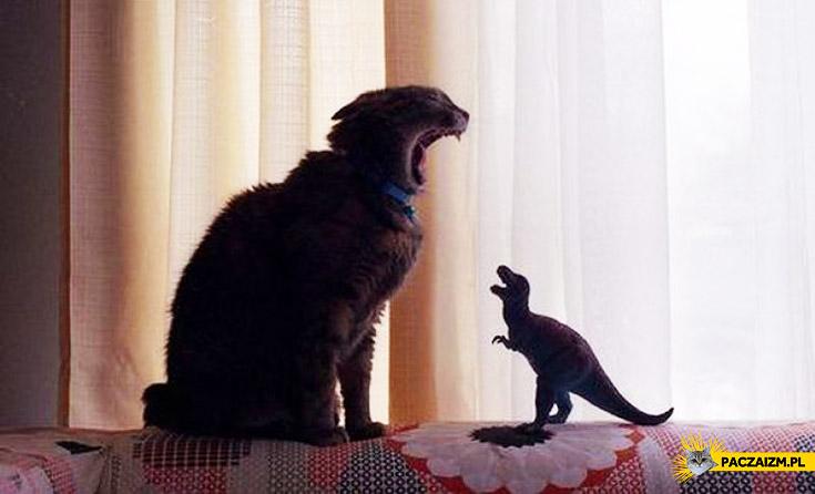 Kot kontra dinozaur