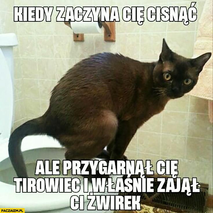Kot na kiblu kiedy zaczyna Cię cisnąć ale przygarnął Cię tirowiec i właśnie zajął Ci żwirek