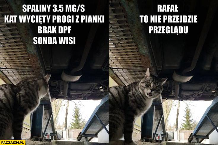 Kot ogląda auto samochód Rafał, to nie przejdzie przeglądu