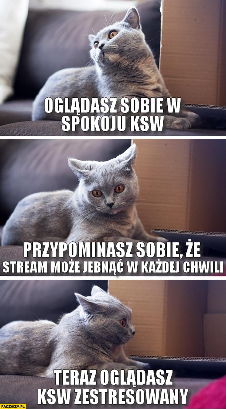 Kot oglądasz sobie w spokoju KSW, przypominasz sobie, że stream może jebnąć w każdej chwili teraz oglądasz KSW zestresowany