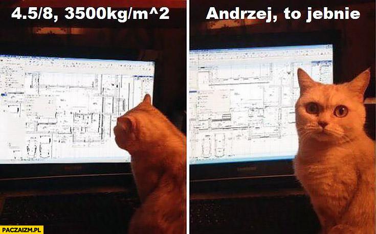 Kot patrzy na schemat wyliczenia projekt. Andrzej, to jebnie