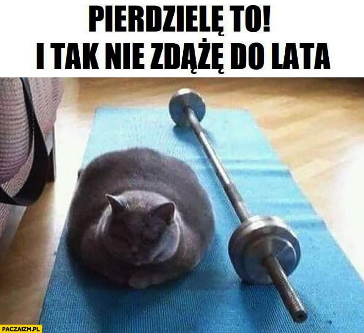 Kot pierdzielę to i tak nie zdążę schudnąć do lata sztanga ćwiczenia