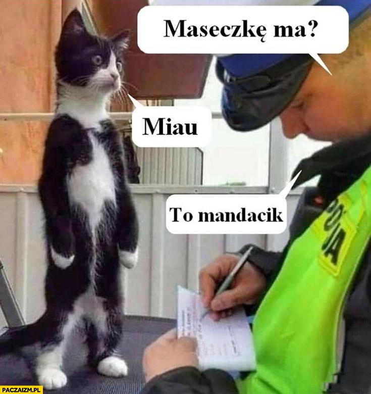Kot policjant maseczkę ma? Miau, to mandacik