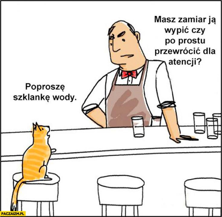 Kot poproszę szklankę wody masz zamiar ją wypić czy po prostu przewrocić dla atencji