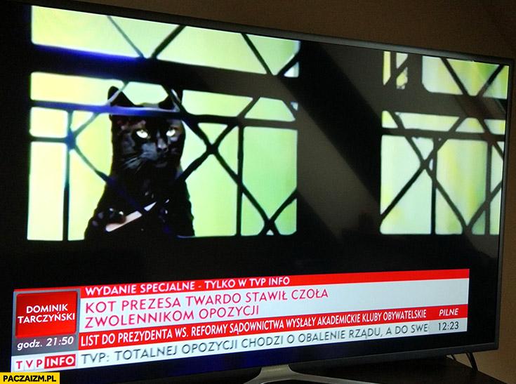 Kot prezesa twardo stawił czoła zwolennikom opozycji Jarosława Kaczyńskiego