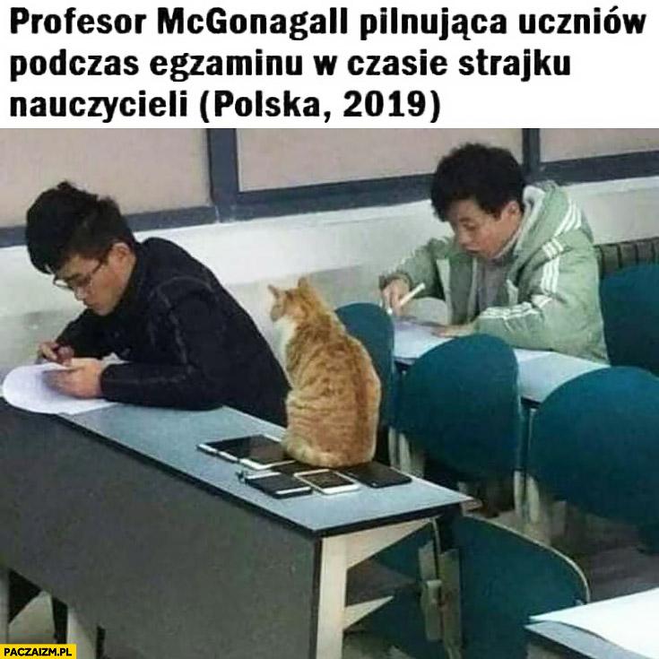 Kot profesor McGongall pilnująca uczniów w czasie strajku nauczycieli polska 2019
