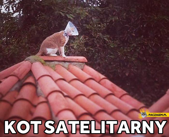 Kot satelitarny