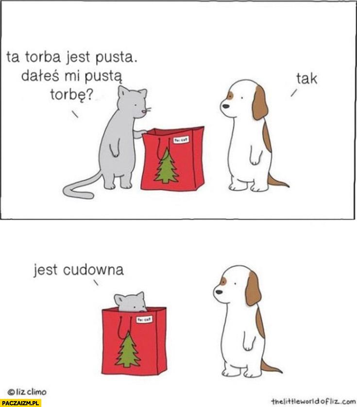 Kot: ta torba jest pusta, dałeś mi pustą torbę? Tak. Jest cudowna