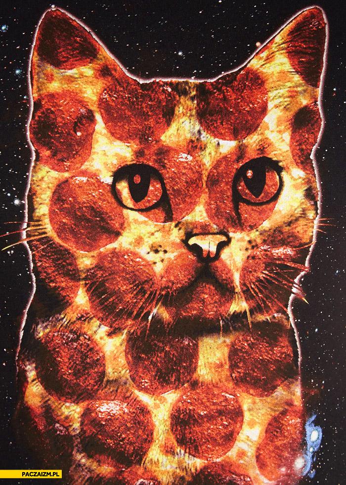 Kot w pizzy