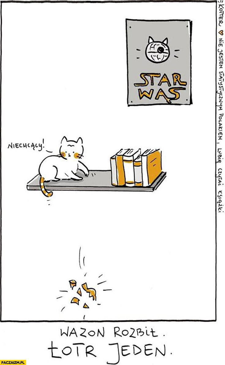Kot wazon rozbił Łotr jeden Star Wąs Gwiezdne Wojny