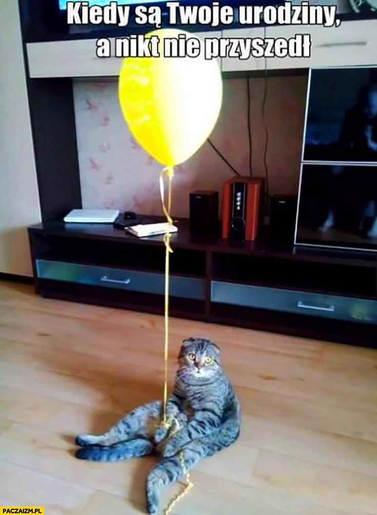 Kot z balonikiem kiedy są Twoje urodziny a nikt nie przyszedł