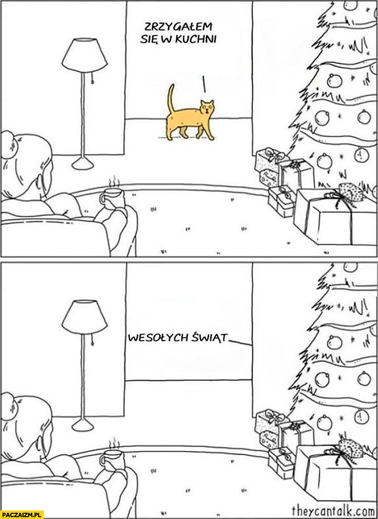 Kot zrzygałem się w kuchni wesołych świąt