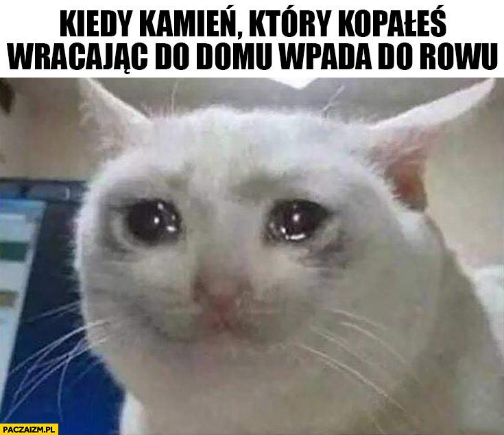 Kotek płacze kiedy kamień który kopałeś wracając do domu wpada do rowu kot