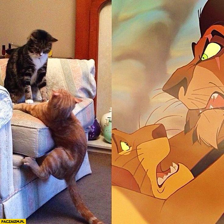 Koty jak Skaza Mufasa w Król Lew