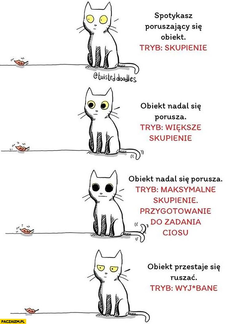 Koty obiekt tryb skupienie obiekt przestaje się ruszać tryb wyjechane