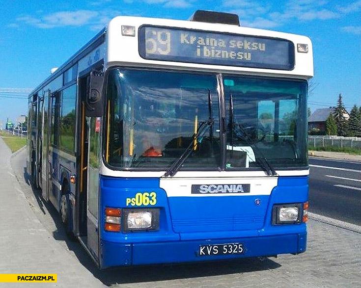 Kraina seksu i biznesu autobus