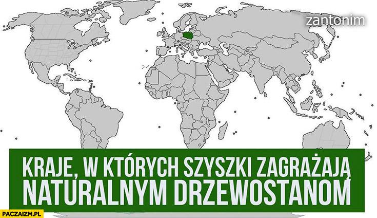 Kraje w których szyszki zagrażają naturalnym drzewostanom Polska minister Szyszko wycinka Puszczy Białowieskiej