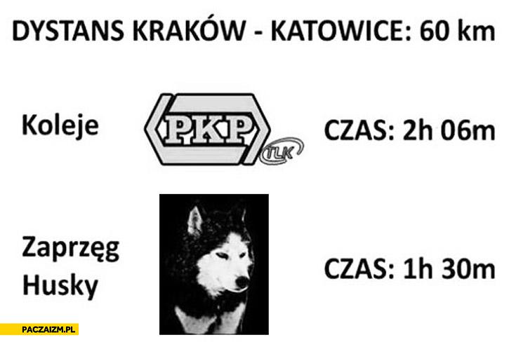 Kraków Katowice PKP zaprzęg Husky