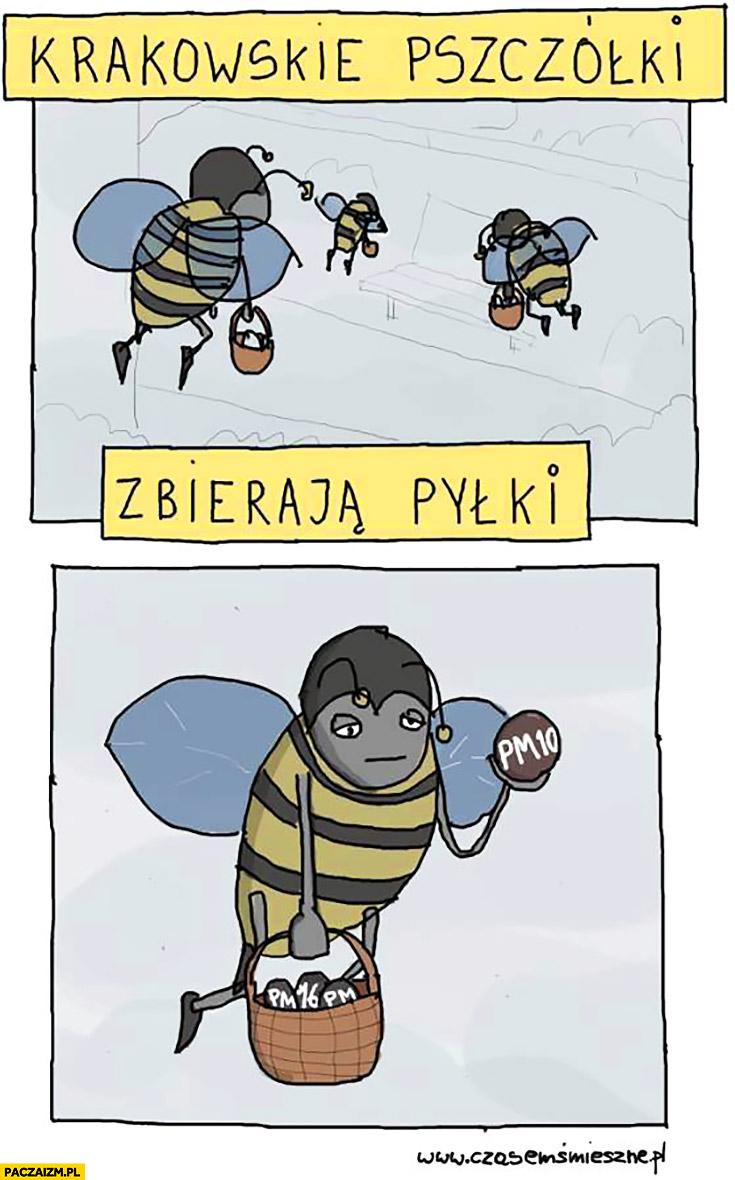 Krakowskie pszczółki zbierają pyłki PM10