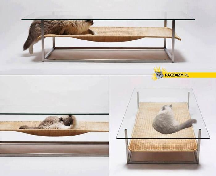 Kreatywna ława z miejscem dla kota