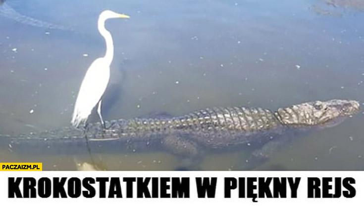 Krokostatkiem w piękny rejs żuraw płynie na krokodylu