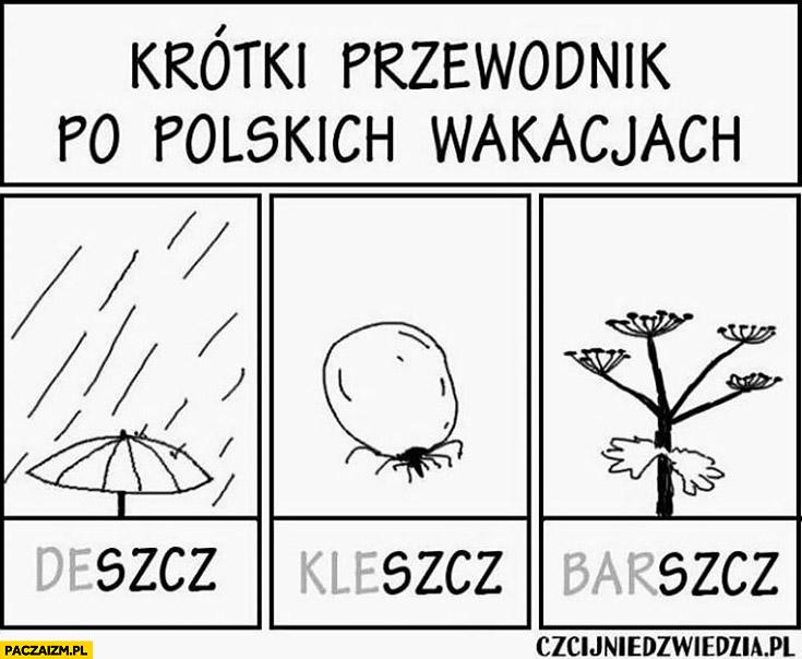 Krótki przewodnik po polskich wakacjach: deszcz, kleszcz, barszcz