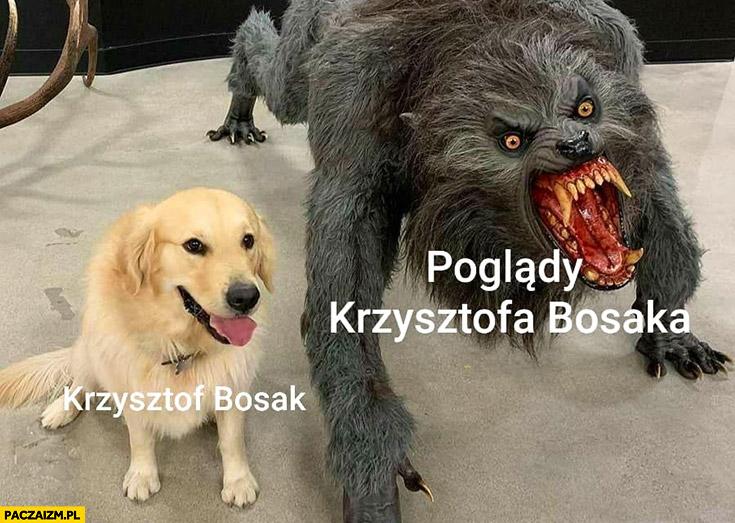 Krzysztof Bosak słodki piesek poglądy Krzysztofa Bosaka potwór