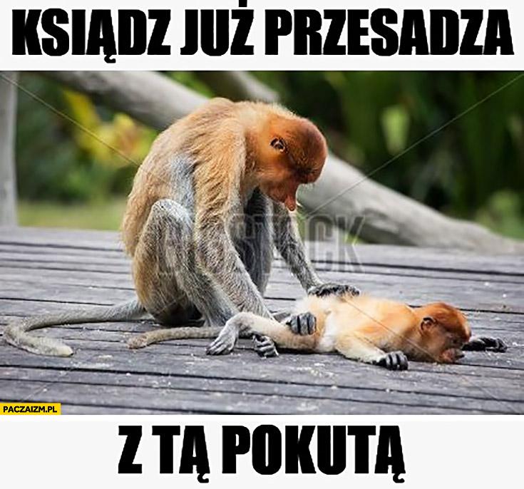 Ksiądz już przesadza z tą pokutą typowy nosacz Polak małpa z dzieckiem małym