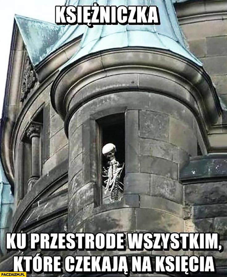 Księżniczka szkielet kościotrup ku przestrodze wszystkim które czekają na księcia