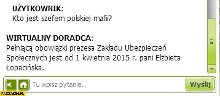 Kto jest szefem polskiej mafii prezes ZUSu od 1 kwietnia Elżbieta Łopacinska
