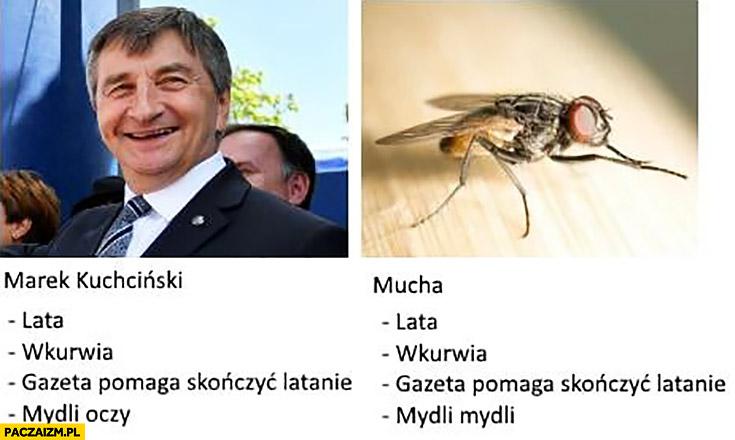Kuchciński mucha porównanie: lata, wkurwia, gazeta pomaga skończyć latanie, mydli oczy, mydli mydli