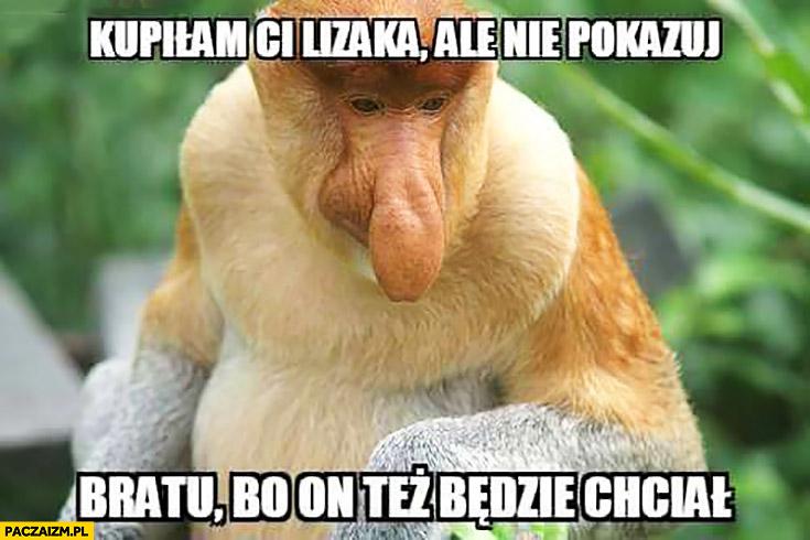 Kupiłam Ci lizaka ale nie pokazuj bratu bo on też będzie chciał typowy Polak nosacz małpa