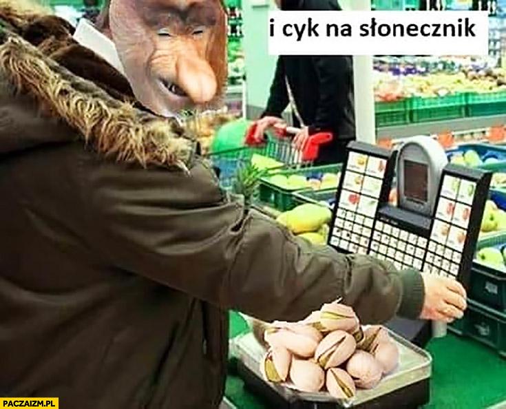 Kupuje pistacje i cyk na kasie wybiera słonecznik typowy Polak nosacz małpa