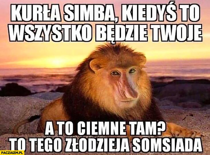 Kurła Simba kiedyś to wszystko będzie Twoje, a to ciemne tam? To tego złodzieja sąsiada Król Lew typowy Polak nosacz małpa