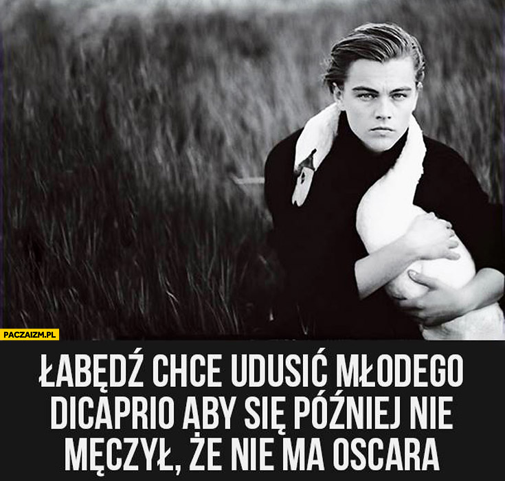 Łabędź chce udusić młodego Leonardo DiCaprio aby się później nie męczył że nie ma Oscara