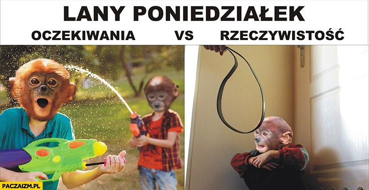 Lany poniedziałek oczekiwania vs rzeczywistość Pioter lanie typowy Polak nosacz małpa