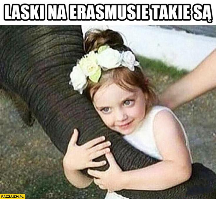 Laski na Erazmusie takie są dziewczynka dziecko trzyma trąbę słonia