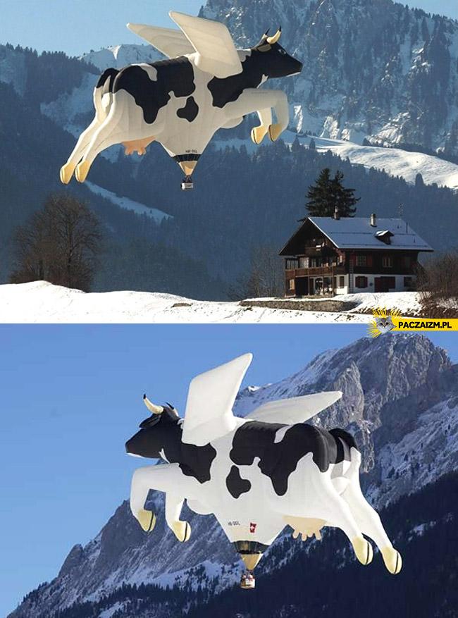 Latająca krowa balon