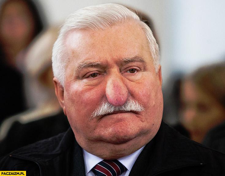 Lech Wałęsa nos jak nosacz Typowy Polak przeróbka