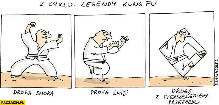 Legendy kung-fu Wilq: droga smoka, droga żmiji, droga z pierwszeństwem przejazdu