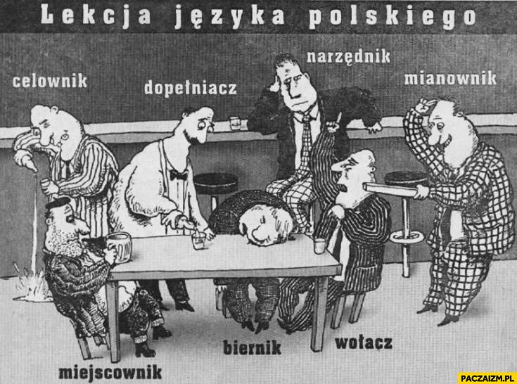 Lekcja języka polskiego odmiana przez przypadki pijaczki pijacy w barze