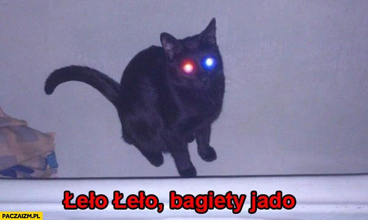 Łeło łeło bagiety jadą kot oczy niebiesko-czerwone