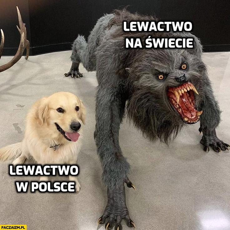Lewactwo w Polsce vs lewactwo na świecie porównanie